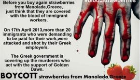 International boycott of Manolada strawberries