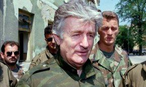 Karadzic and the NGOscandal